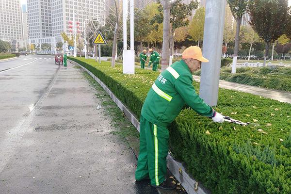 武汉园林绿化养护